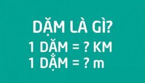1 dam
