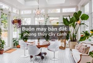buon may ban dac phong thuy
