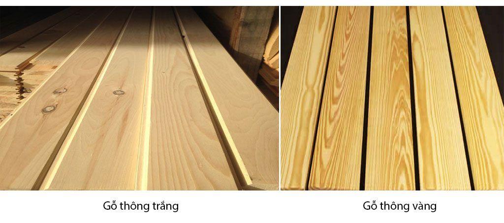 go thong vang