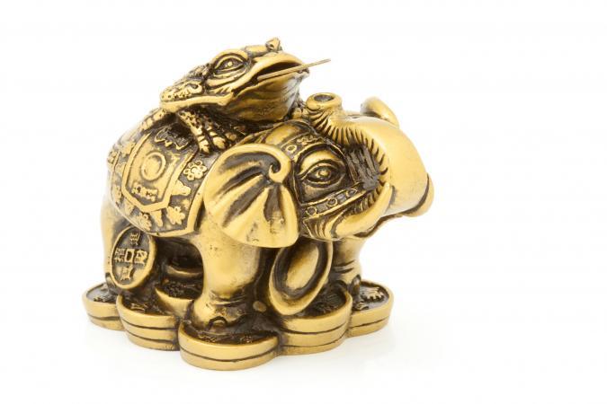 voi phong thuy