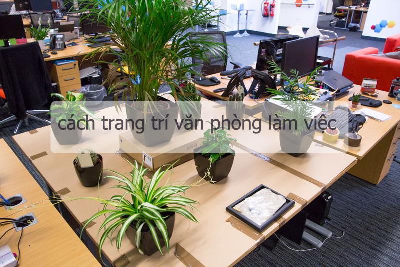 Những cách trang trí nội thất văn phòng làm việc hay