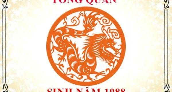 phong thuy tuoi mau thin sinh nam 1988
