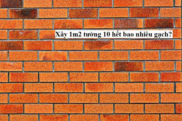 xay tuong 10