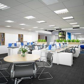 Thiết kế văn phòng công ty bất động sản sang trọng.